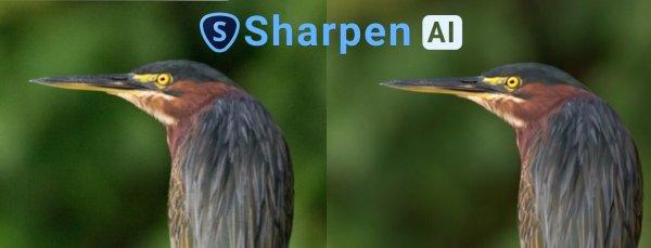 Sharpen AI Rescue blurry